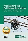 Arbeitsschutz und Gefährdungsbeurteilung: Struktur - Pflichten - Rechtsfolgen - Beispiele